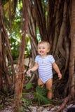 Der Junge in den Wurzeln des Ficus Stockfotos