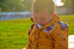 Der Junge, der in der Sonne heranwächst lizenzfreie stockbilder