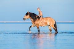 Der Junge, der ein Pferd im Meer reitet Stockfotos