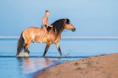 Der Junge, der ein Pferd im Meer reitet Lizenzfreie Stockfotografie