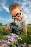Der junge Forscher Stockbild