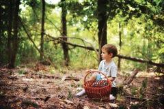 Der Junge im Holz Lizenzfreies Stockfoto