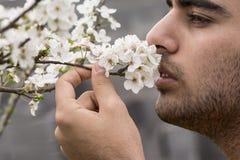 Der junge Mann, der vom Frühlingszeit-Pflaumenbaum genießt, knospt Geruch lizenzfreie stockbilder