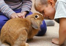 Der Junge mit dem Kaninchen Stockfotografie