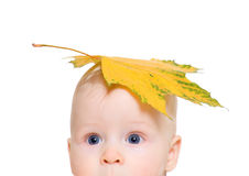 Der Junge mit einem Ahornblatt auf dem Kopf lizenzfreie stockfotos