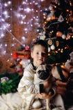Der Junge mit einem Pug Lizenzfreies Stockfoto