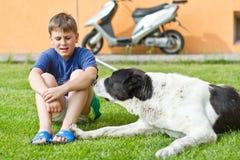 Der Junge mit seinem Hund lizenzfreie stockfotografie