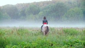 Der junge Reiter, der ein Pferd reitet, springt zum Nebel auf dem Hintergrund der schönen Natur stock video