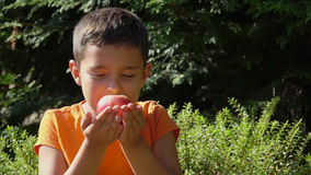 Der Junge riecht das Aroma des Pfirsiches stock video footage