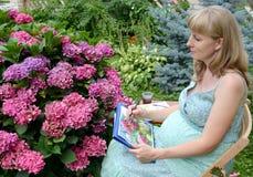 Der junge schwangere weibliche Künstler zeichnet Wasserfarbfarben eine blühende Hortensie Lizenzfreie Stockfotos