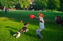 Der Junge spielt auf einem Rasen mit Hund Stockfoto