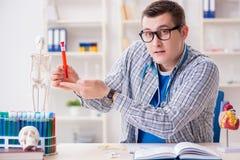 Der junge Student, der Chemie in der Universität studiert Stockbilder