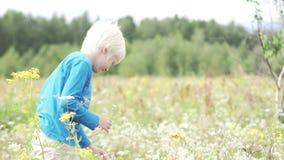 Der Junge tritt auf dem Gebiet der Kamille zusammen stock video