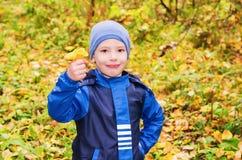 Der Junge tritt in den Herbstwaldpilzen zusammen Stockbild