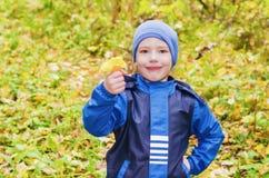 Der Junge tritt in den Herbstwaldpilzen zusammen Lizenzfreie Stockfotos
