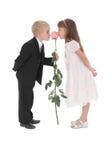 Der Junge und das Mädchen riechen eine Rose Lizenzfreie Stockfotos