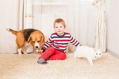 Der Junge und die reizenden Haustiere lizenzfreies stockbild