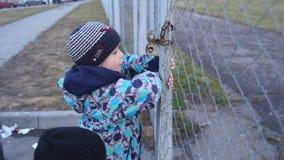 Der Junge versucht, den Verschluss auf einem hohen Zaun zu öffnen stock footage