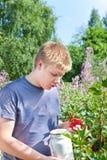 Der Junge wählt Beeren einer roten Johannisbeere von einem Busch aus Stockfoto