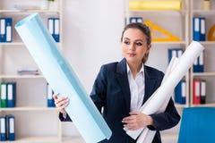 Der junge weibliche Architekt, der im B?ro arbeitet lizenzfreies stockbild