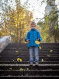 Der Junge wirft die Blätter auf den Schritten im Herbstpark stockbilder