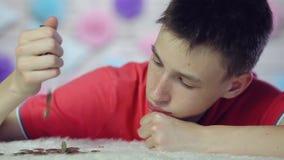 Der Junge zerstreut Münzen und ist traurig Abschluss oben stock video footage