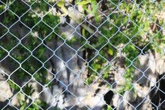 Der Käfig und die Ansicht der Natur Lizenzfreie Stockbilder