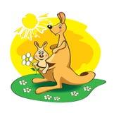 Der Känguru lizenzfreie abbildung