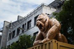 Der König Kong lizenzfreie stockbilder