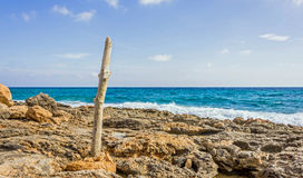 An der Küste von Caposalinen Stockfotografie