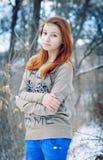 Der kalte Wintertag Stockfotos