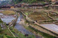 Der Kanal, der durch Reis überschreitet, fängt nahe Dorf, Zhaoxing, Guizho auf Stockbilder