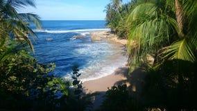 Der karibische Strand lizenzfreie stockfotografie