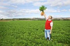 Der Karottelandwirt Stockbild