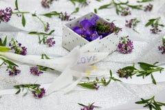 Der Kasten wird mit purpurroten Blumen auf der umfassten Oberfläche gefüllt Lizenzfreie Stockfotos