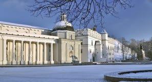 Der Kathedralenbereich und die Kathedrale in Vilnius Stockfotos