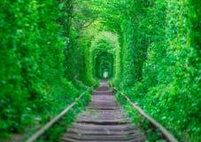 Der Kerl mit dem Mädchen gudlyayut Eisenbahntunnel des Liebesfrühlingswaldes Lizenzfreie Stockfotos