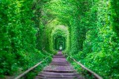 Der Kerl mit dem Mädchen gudlyayut Eisenbahntunnel des Liebesfrühlingswaldes Stockfotografie