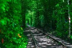 Der Kerl mit dem Mädchen gudlyayut Eisenbahntunnel des Liebesfrühlingswaldes Stockbild