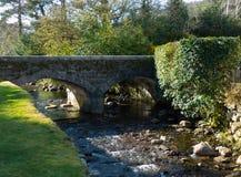 Der kleine Bach und die gewölbte Steinbrücke am alten klösterlichen Standort Glendalough in den Wicklow-Bergen in Irland Stockfotografie