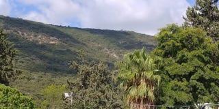 Der kleine Bauernhof auf Kibbuzim Yagur Stockfotografie