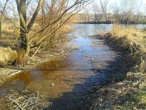 Der kleine Fluss Stockbild