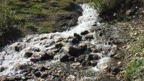 Der kleine Fluss im Tal stock video