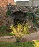 Der kleine Garten unter der alten Brücke Lizenzfreies Stockbild