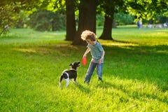 Der kleine Gefährte bildet einen Hund im Park aus Lizenzfreie Stockfotografie