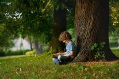 Der kleine Gefährte sitzt unter einem großen Baum und betrachtet den Tablettenschirm Stockbilder