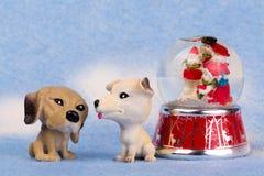 Der kleine Hund mit zwei Spielzeugen auf einem Blau verwischte Hintergrund Stockfotografie