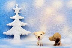 Der kleine Hund mit zwei Spielzeugen auf einem Blau verwischte Hintergrund Stockbilder