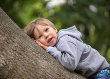Der kleine Junge auf dem Baum Lizenzfreie Stockfotografie