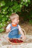 Der kleine Junge mit Sommerkirschen Lizenzfreies Stockbild